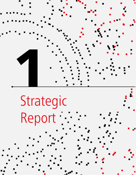 Strategic report